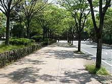 静岡市中央体育館脇から内堀を望む
