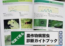 写真で見る 農作物病害虫診断ガイドブック 新増補版/静岡県植物防疫協会