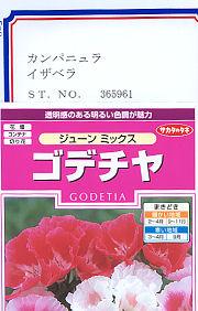 ゴテチヤ(上)とカンパニュラ(下)の種子袋