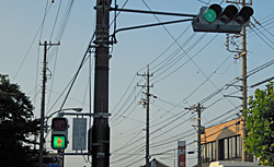 歩行者用信号機と普通の信号機