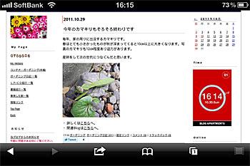 iPhone4のPuffinでコンテナ・ガーデニングを表示