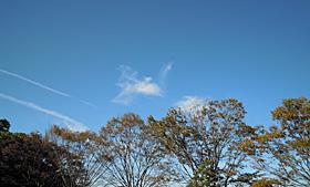 2011.11.01 菊川市