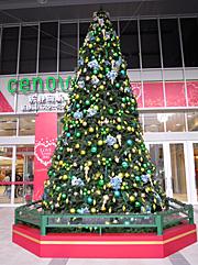 静岡セノバ前のクリスマスツリー