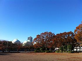 静岡市駿河区池田 2011.12.04