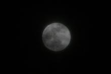 2011.12.10 19:49 静岡市葵区 満月
