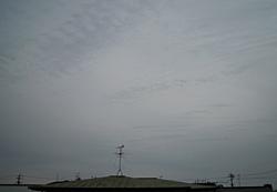 静岡市葵区 2012.01.15 14:40