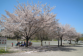 駿府城公園 静岡市葵区 2012.04.12