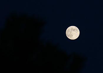 ブルームーン 2012.08.31 18:26 静岡市葵区 東の空