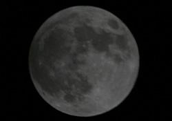 食の途中 2012.11.28 22:15 静岡市葵区平野部