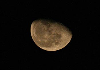 月齢 20.3の月 2013.03.02 23:08 静岡市葵区平野部 東の空