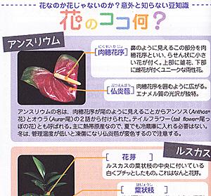 花研手帳 2013の「花のココ何?」のページ (P.44)<br />