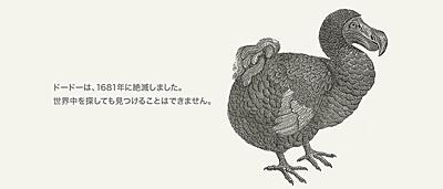 世界自然保護基金ジャパン(WWFジャパン)の'404 File not found'のページ(ドードー)