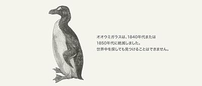世界自然保護基金ジャパン(WWFジャパン)の'404 File not found'のページ(オオウミガラス)