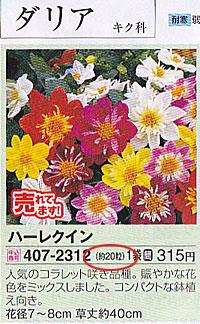 サカタのタネの「家庭園芸 2014 春」号 P123 ダリアのタネ