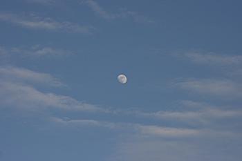 月齢 10.8の月 2014.01.12 16:17 静岡市葵区平野部 東の空
