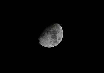 月齢 9.6の月 2014.02.09 21:46 静岡市葵区平野部 天頂付近