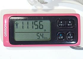 オムロン 歩数計 HJ-205IT-PK