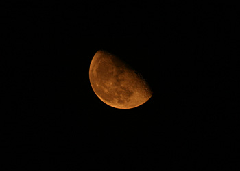 月 月齢 20.0 2014.09.14 22:51 静岡市葵区平野部 東の空