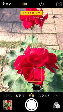 iPhone5(OS8)のカメラのフォーカスロック画面