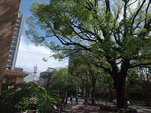 2015.04.21 静岡市葵区