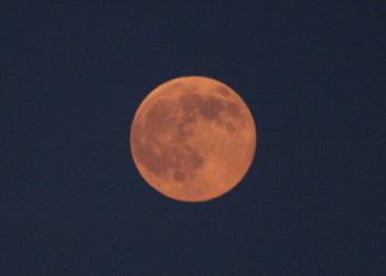 満月(ブルームーン) 月齢 15.5 2015.07.31 19:24 静岡市葵区平野部 東の空
