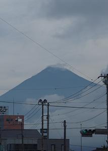 富士市本市場