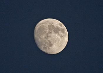 十三夜の月(後の月) 月齢 12.3 2015.10.25 17:09 静岡市葵区平野部 東の空