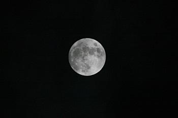 十四夜の月 月齢 13.5 2016.01.23 22:53 静岡市葵区平野部 南南東の空