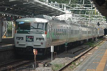 185系電車 特急「踊り子」<br />