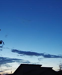金星 2017.08.05 4:40 静岡市葵区平野部 東の空