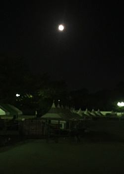 近点の月(月齢 17.7) 2017.11.06 21:00 駿府城公園  東の空