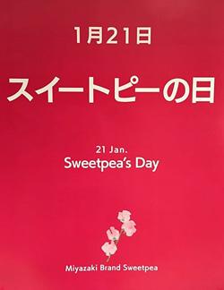 Miyazaki Brand Sweetpeaから画像引用