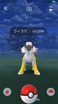 「ライコウ」 ※ Pokémon GO!から画像引用