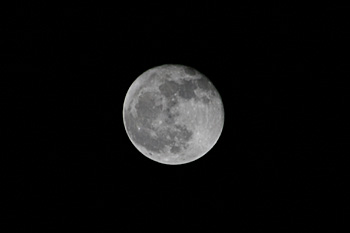 ・ 月齢 16.9の月 2018.11.24  22:21 静岡市葵区平野部 南東の空