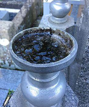 愛宕霊園の花筒の水が凍っていました
