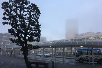 JR静岡駅南口 2019.02.20 6:48