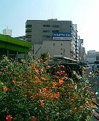江川町交差点 2006.10.30