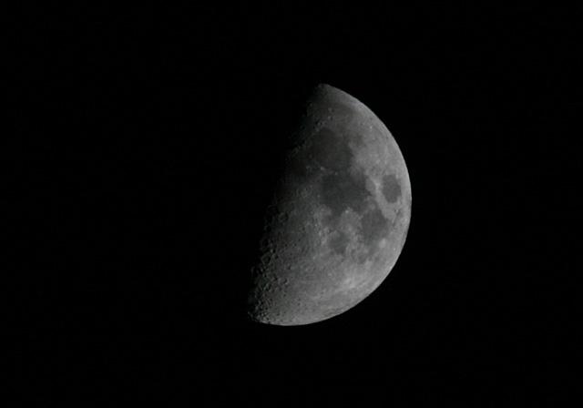 月齢 07 上弦