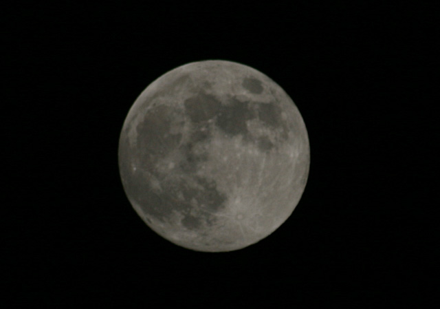 月齢 14 小望月