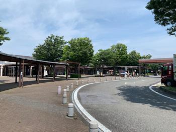 Makinohara202
